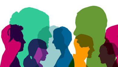 تصویر از مدیریت تنوع (Diversity management)