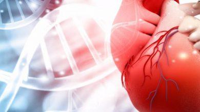 تصویر از نارسایی قلبی (Heart failure)