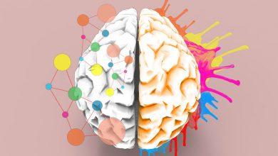 تصویر از سیستم خلاق مغز و پیشنهادات خلاقیت و نوآوری