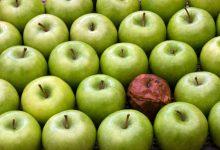 تصویر از سندروم سیب لکدار